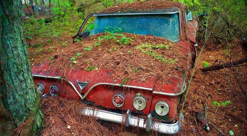 Proteger el coche parado mucho tiempo para evitar daños