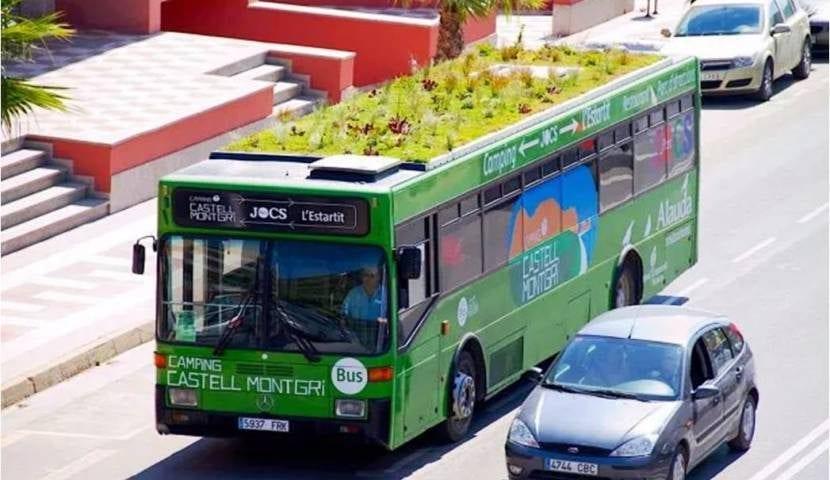 Autobuses jardín