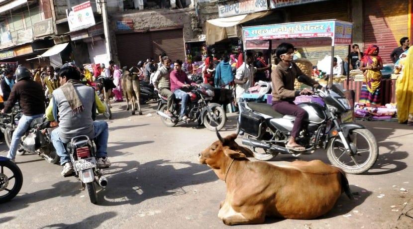 Coches autónomos India