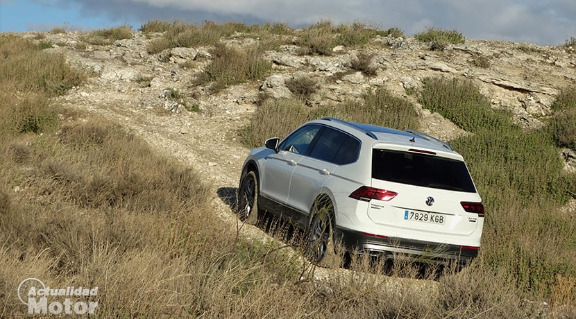Volkswagen Tiguan Allspace en campo