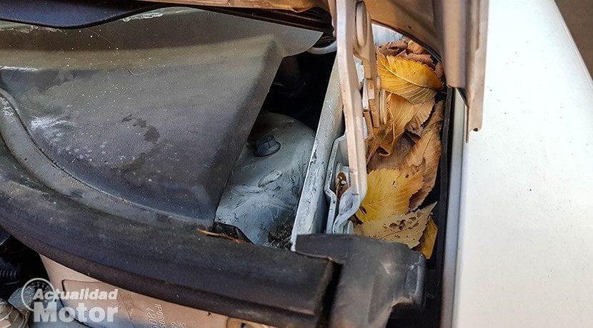 Quitar hojas al limpiar el motor del coche