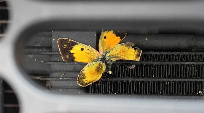 Limpiar radiador del coche por fuera para su mantenimiento