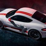 Techo del Porsche 718 Cayman GT4 Sports Cup Edition