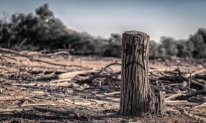 Un informe de la ONU acucia la necesidad de reducir las emisiones
