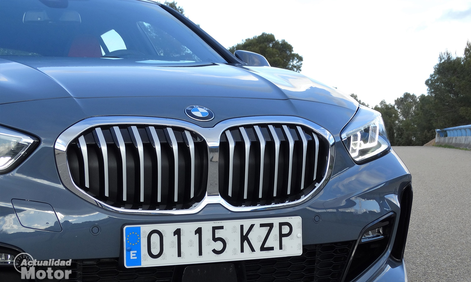 BMW Serie 1 parrilla frontal activa
