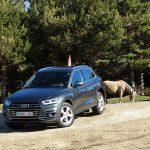 Audi Q5 55 TFSIe 367 CV