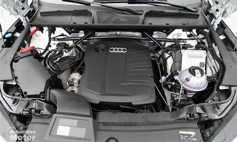 Motor TDI 204 CV Audi Q5