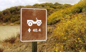 Jeep 40.4 teaser