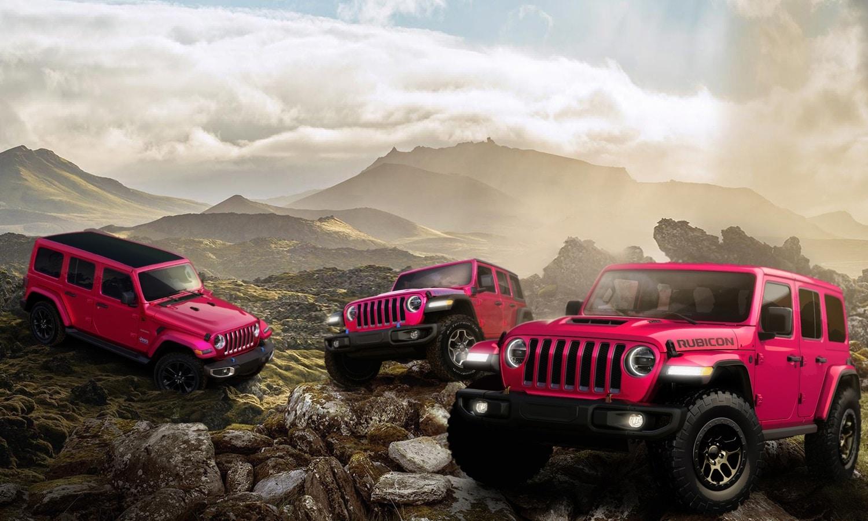 Jeep Wrangler Tuscadero family